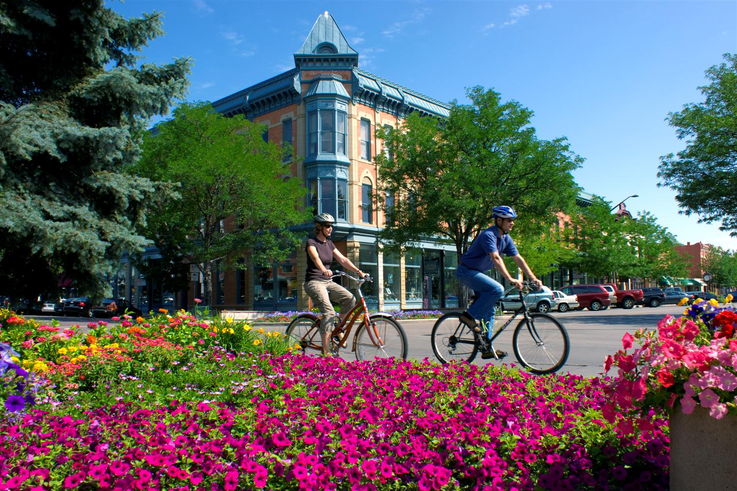fort-collins-home-owners